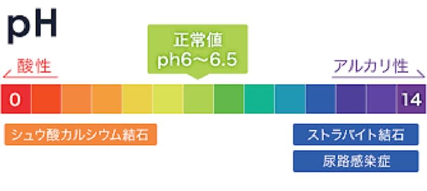 尿のpHの程度は結石形成に大きな影響を及ぼすことを示す図