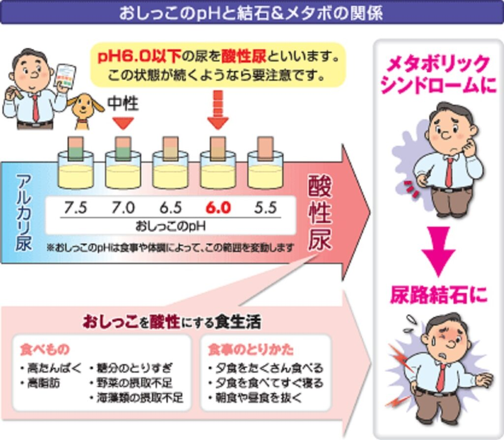 尿のpHとメタボリック症候群 結石形成の関係をまとめた図