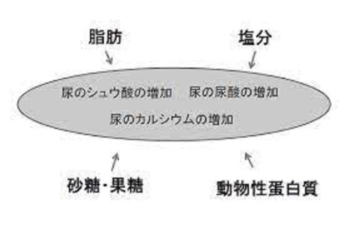 食生活の改善が結石の予防に有用であることを示す図