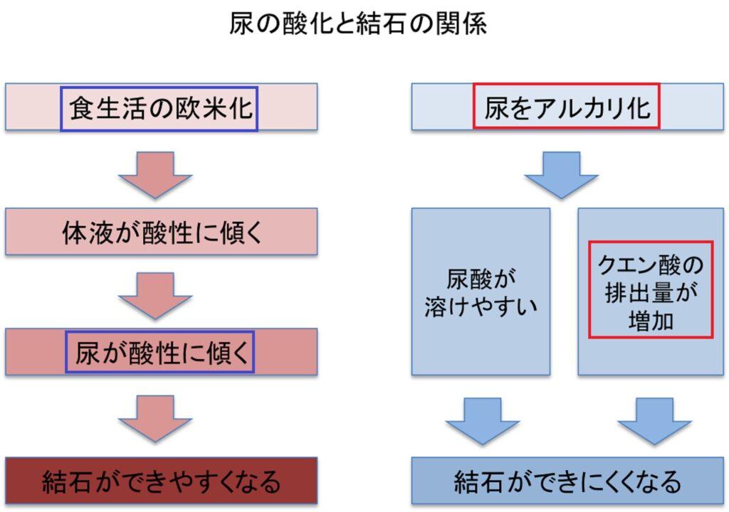 クエン酸の結石予防効果を説明した図