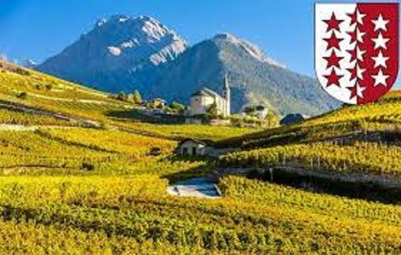 ヴァレー州のワイン畑の光景
