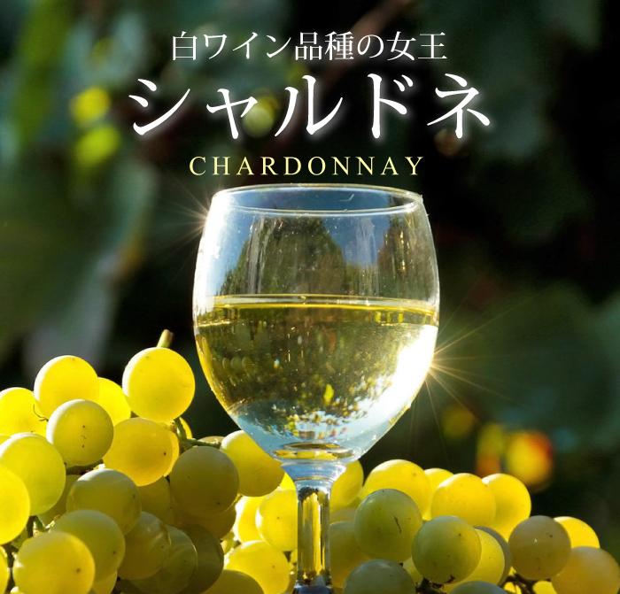 フランスワインの白ブドウ