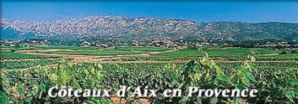 コート・ド・プロヴァンスの山あいの風景